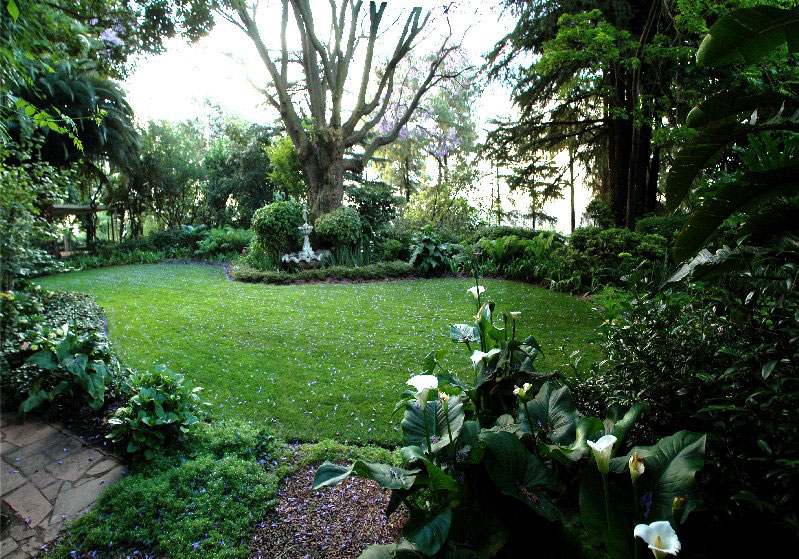 House to Rent Houghton garden